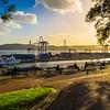 Best of Lisbon Garden Sunshine Art Photography 6 By Messagez com
