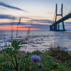 Lisbon Vasco da Gama Bridge at Sunrise Photography 4 By Messagez com
