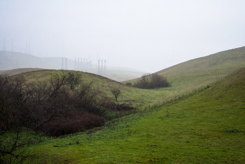 Altamont Pass Wind Farm | California
