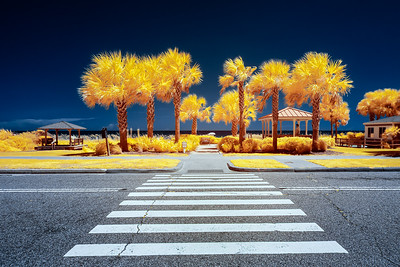 Crosswalk to the Beach