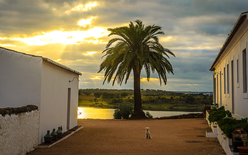 Best of Alentejo Photography 10 By Messagez com