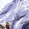 Changri Nup Glacier Porter