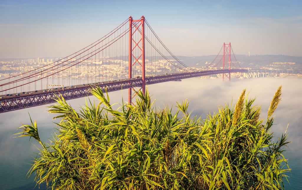 Original Lisbon 25th of April Bridge Landscape Photography 15 By Messagez com