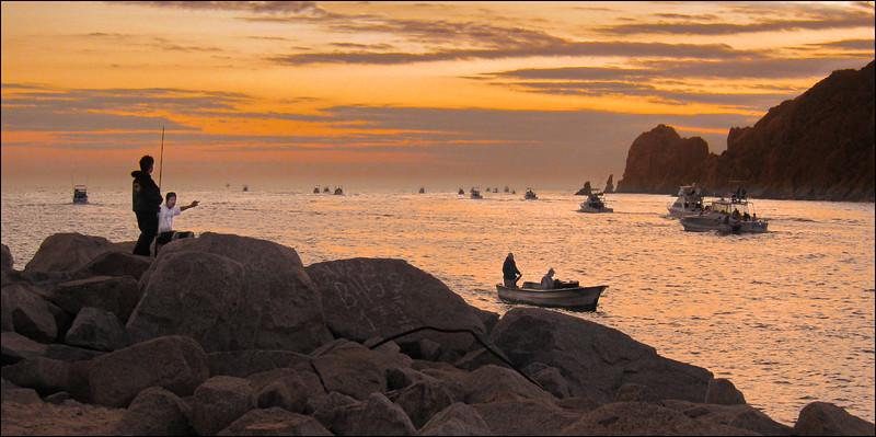 Fishing Fleet Sails at Dawn, Cabo San Lucas, Mexico