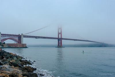 Fog Horn