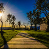 Best of Lisbon Garden Sunshine Art Photography 8 By Messagez com