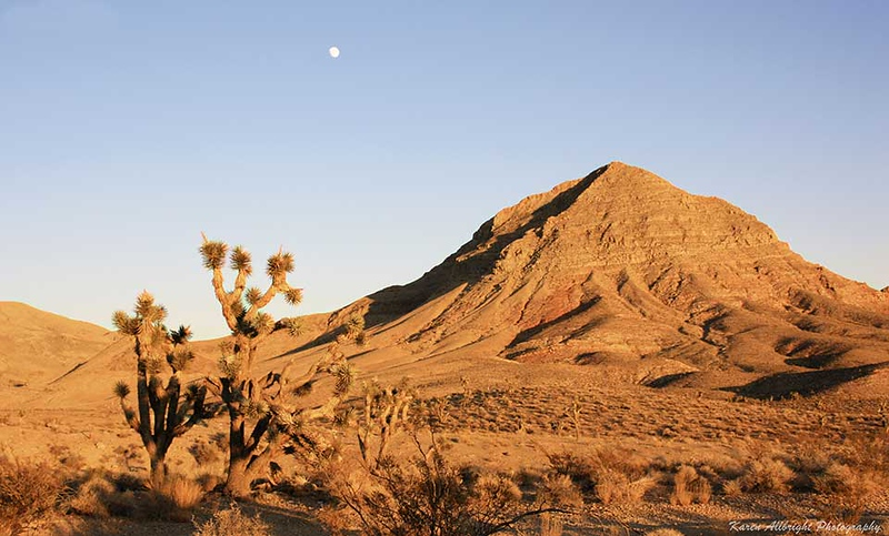 Desert, Utah