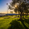 Best of Lisbon Garden Sunshine Art Photography 3 By Messagez com