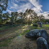 Portugal Cromlech of the Almendres Megalithic Magic Photography 13 By Messagez com
