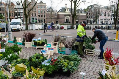 Amsterdam. Street flower stall