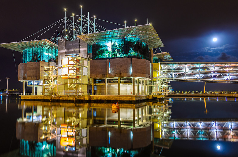Portugal Oceanarium at Moonlight Fine Art Photography 4 By Messagez com