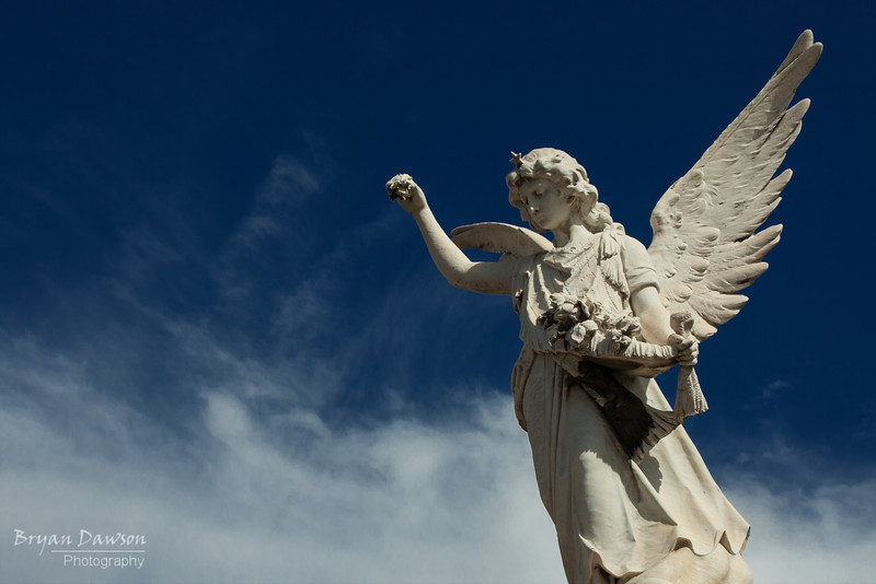 One of my favorite shots from my afternoon shooting in Recoleta Cemetery in Buenos Aires, Argentina.