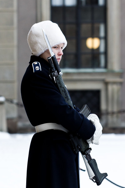 Swedish Royal Gaurd