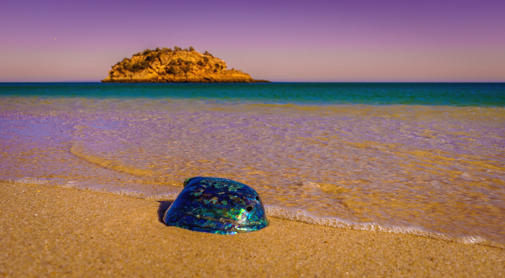 Best of Portugal Arrabida Beach Photography 8 By Messagez com