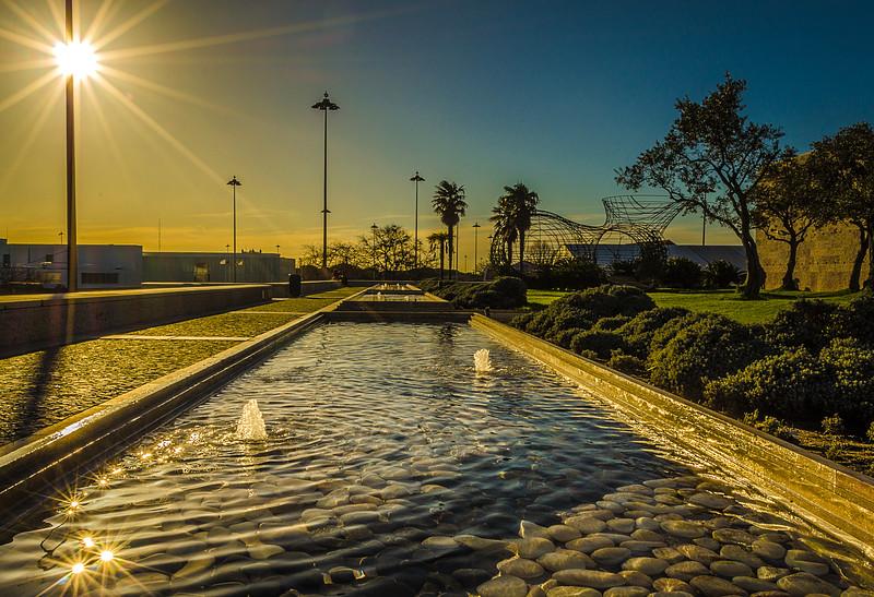 Best of Lisbon Garden Sunshine Art Photography 9 By Messagez com