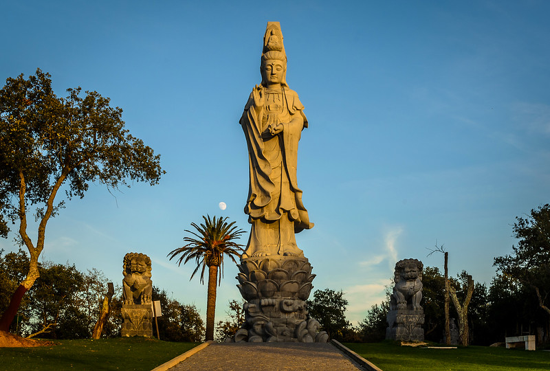 Buddha Eden Meditation Moment By Messagez com