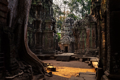 Ta Prohm: A Timeless Beauty