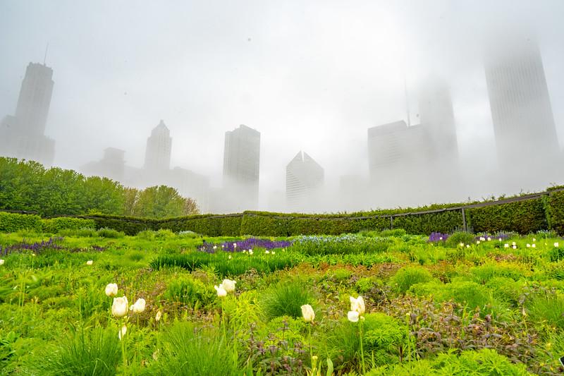 Chicago mist