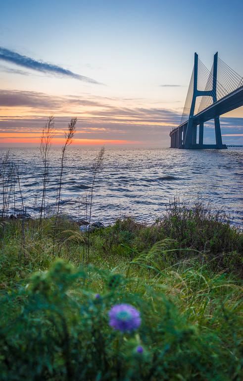 Lisbon Vasco da Gama Bridge at Sunrise Photography 3 By Messagez com