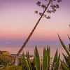 Unique Portugal Algarve Coastline at Sunset Photography 3 Messagez com