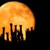 Special Super Orange Moon Photography By Messagez com