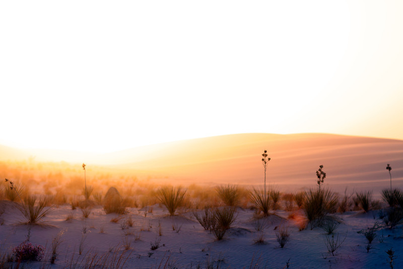 Golden Hour at White Sands - 2013