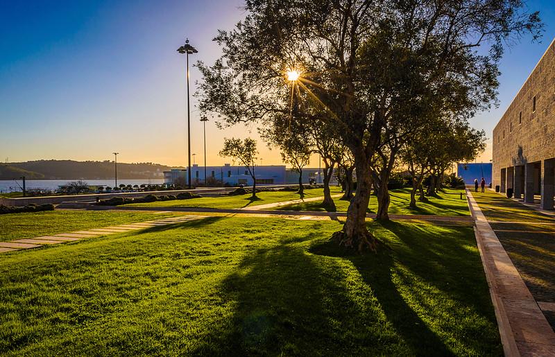 Best of Lisbon Garden Sunshine Art Photography 3 By Messagez com