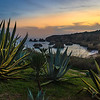 Algarve Beach Cactus Sunset Photography By Messagez com