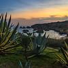 Algarve Beach Cactus Sunset Photography By Messagez com