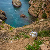 Berlenga Island  Portugal Landscape Photography 4 By Messagez com