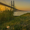 Best of Lisbon Bridge Sunrise Photography 8 By Messagez com
