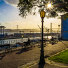Best of Lisbon Garden Sunshine Art Photography 5 By Messagez com