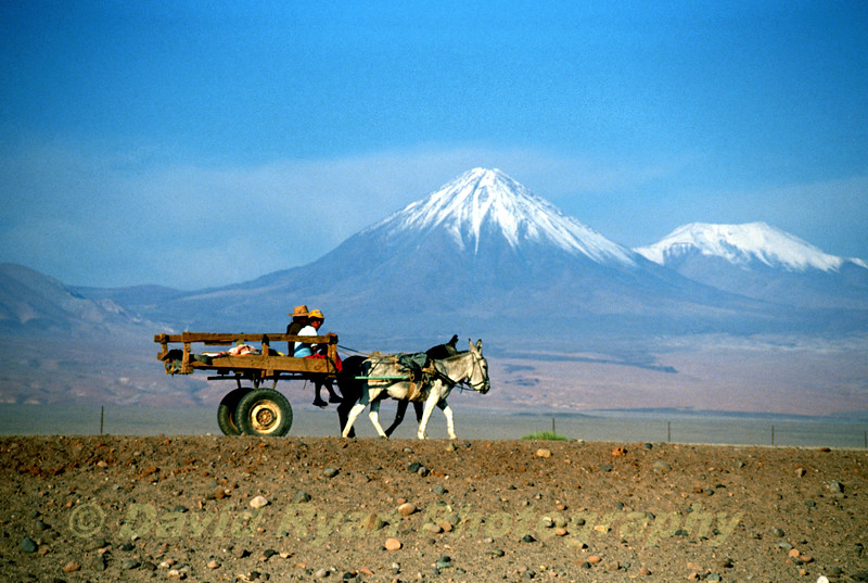 Cart before the Andes