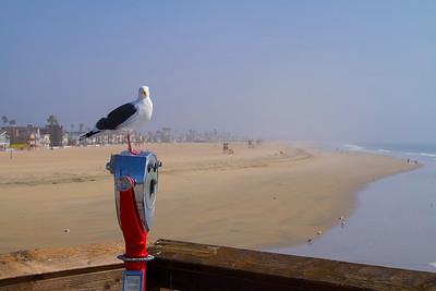 Newport Pier, CA
