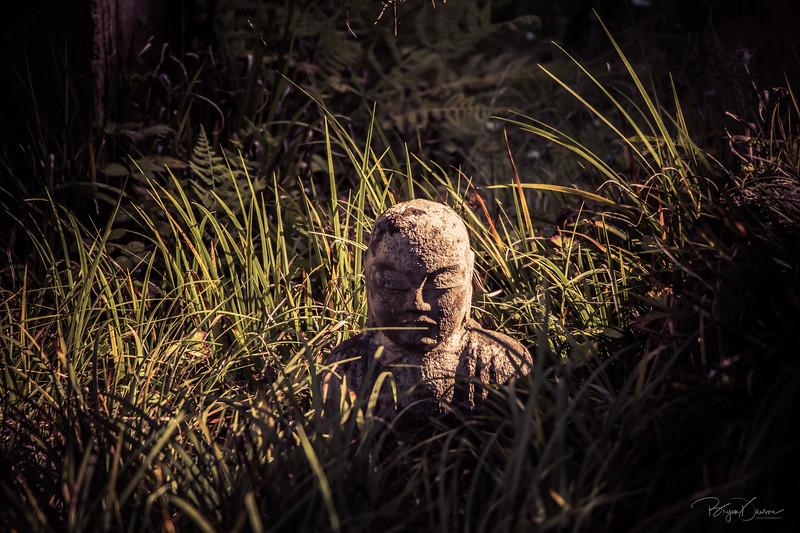 Hidden Buddha Closeup