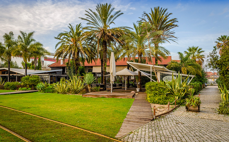 Lisbon Green Docas Photography By Messagez com