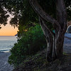 Road to Arrabida at Sunset By Messagez com