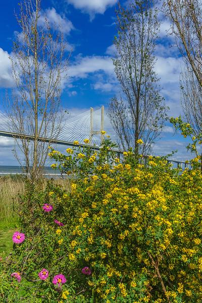 Portugal Lisbon Bridge Art Photography 22 By Messagez com