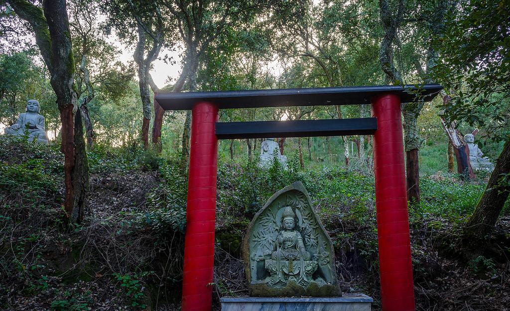 Buddha Eden Art Sculptures Photo 1 By Messagez com