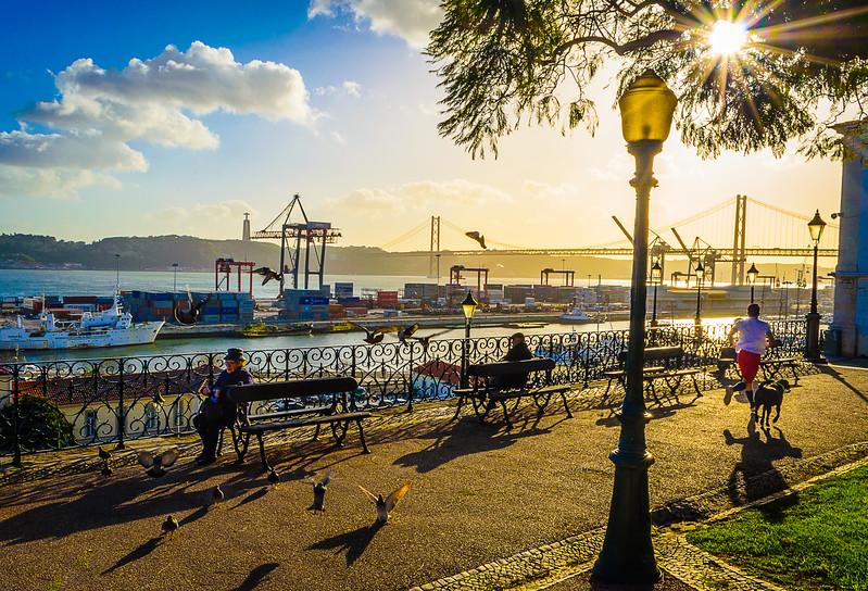 Best of Lisbon Garden Sunshine Art Photography 2 By Messagez com