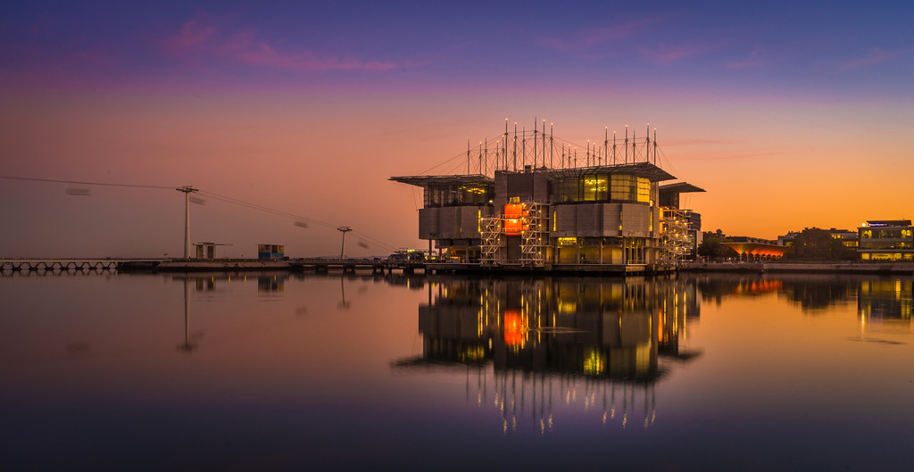 Original Lisbon Oceanarium at Sunset Photography 3 By Messagez com