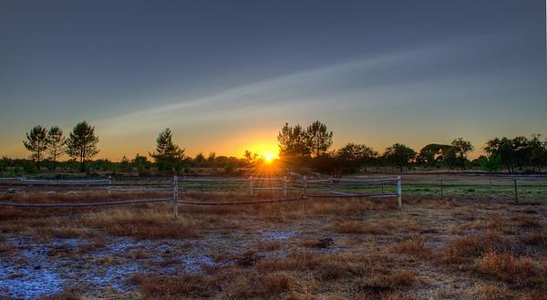 Unique SunRays Image By Messagez.com