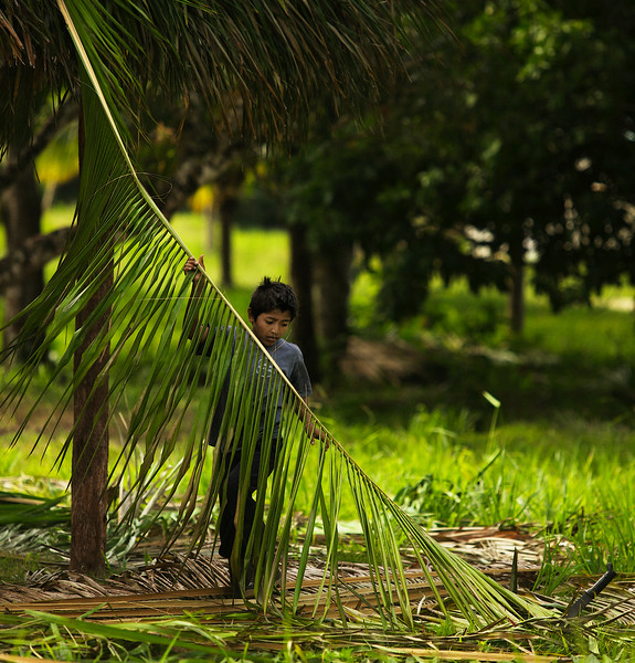 Blue Creek Village, Belize. 2012