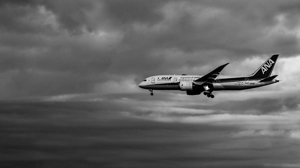 ANA Jet Landing
