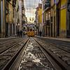 Best of Lisbon Trams Photography 50 By Messagez com