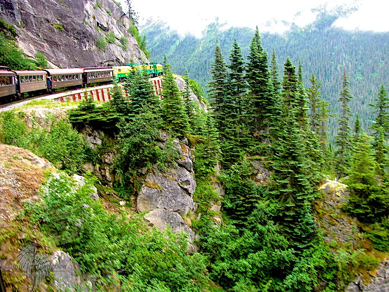 Alaska Mountain Train Ride