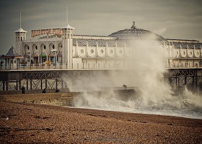 Brighton Surge