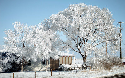 Freeze Fog in San Luis Valley, Colorado