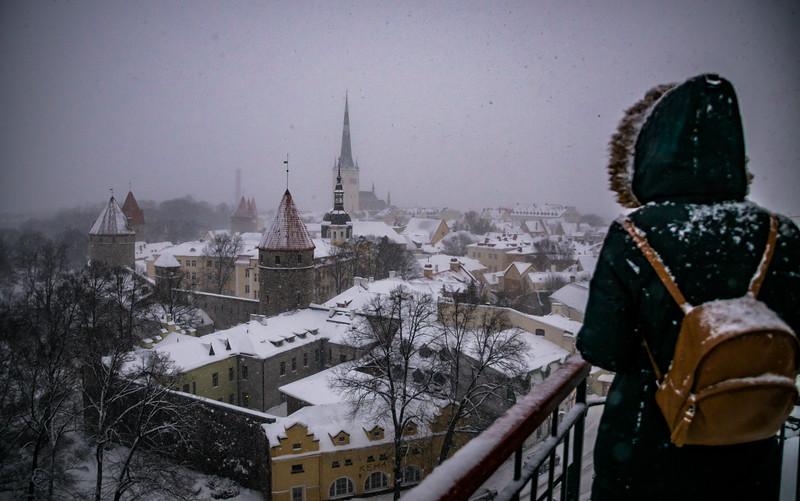 Tallinn City View