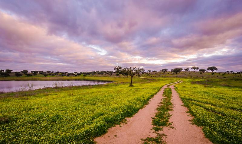Original Alentejo Pathway Photography Messagez com